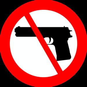 porto d'armi studio legale